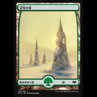 画像1: 冠雪の森/Snow-Covered Forest [MH1]
